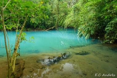 Laguna Celeste