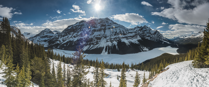 Peyto Lake - Banff